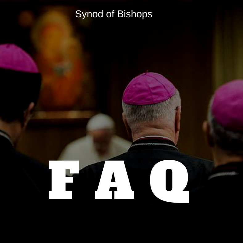 FAC synode